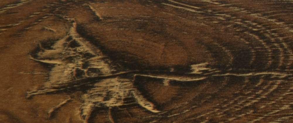 Laminate Floor Moulding-Trim-Transition Colour Tawny Gold Streaks